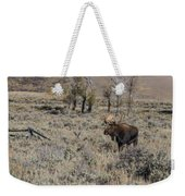 ME9 Weekender Tote Bag by Joshua Able's Wildlife