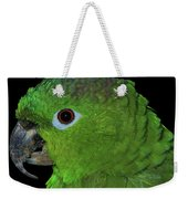 Mealy Amazon Weekender Tote Bag by Debbie Stahre
