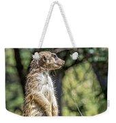 Meerkat Alert Weekender Tote Bag by Kate Brown