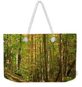 Meigs Creek Trailhead In Smoky Mountains National Park Weekender Tote Bag