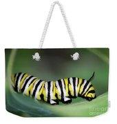 Monarch Caterpillar Macro Weekender Tote Bag
