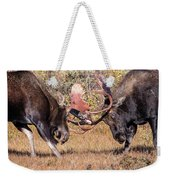 Moose Bulls Spar Close Up Weekender Tote Bag