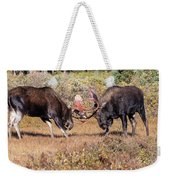 Moose Bulls Spar In The Colorado High Country Weekender Tote Bag