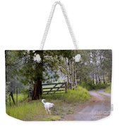 Morning Walk1 Weekender Tote Bag