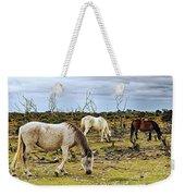 New Forest Ponies On The Heath Weekender Tote Bag