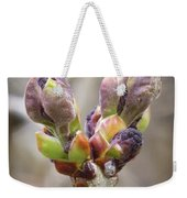 New Life In The Lilacs Weekender Tote Bag