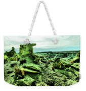 New Mexico Raw Weekender Tote Bag