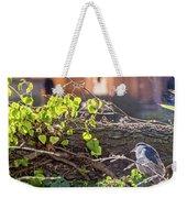 Night Heron At The Palace Weekender Tote Bag by Kate Brown