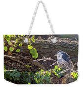 Night Heron At The Palace Revisited Weekender Tote Bag by Kate Brown