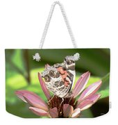 Nose In The Air Weekender Tote Bag by Sally Sperry