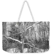 On The Edge Weekender Tote Bag by Kendall McKernon