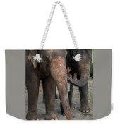 One Man, Two Elephants Weekender Tote Bag