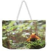 Orange Frog. Weekender Tote Bag