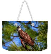 Osprey Lookin' At Ya Weekender Tote Bag by Tom Claud
