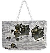 Oysters Weekender Tote Bag by Kim Bemis