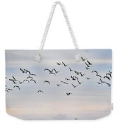 Pacific Ocean Sky With Sea Gull Weekender Tote Bag