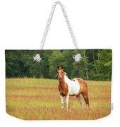 Paint Horse In Meadow Weekender Tote Bag
