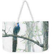 Peacock In Winter Mist Weekender Tote Bag