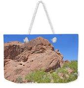 Phoenix Arizona Papago Park  Blue Sky Red Rocks Scrub Vegetation Yellow Flowers 3182019 5340 Weekender Tote Bag