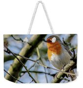 Plump Robin Weekender Tote Bag by Scott Lyons