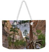 Ponderosa Pines In Slot Canyon Weekender Tote Bag