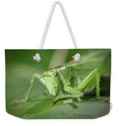 Portrait Of A Great Green Bush-cricket Sitting On A Leaf Weekender Tote Bag