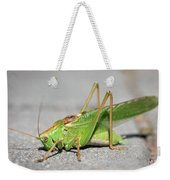 Portrait Of A Great Green Bush-cricket Sitting On The Pavement Weekender Tote Bag