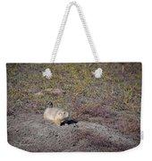 Prairie Dog 1 Weekender Tote Bag