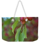Pretty Cherries Hanging From Tree Weekender Tote Bag
