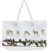 Pronghorn Antelope And Geese Weekender Tote Bag