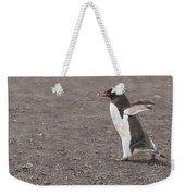 Quick Hurry - Gentoo Penguin By Alan M Hunt Weekender Tote Bag by Alan M Hunt