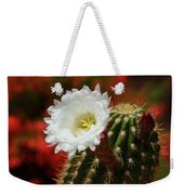 Red Bougainvillea Background For White Argentine Giant Flower Weekender Tote Bag