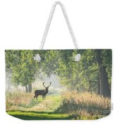 Red Deer In The Forest Weekender Tote Bag