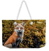 Red Fox In Fall Colors Weekender Tote Bag
