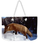 Red Fox Ontario Canada Weekender Tote Bag by Rick Veldman