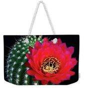 Red Hot Torch Cactus  Weekender Tote Bag