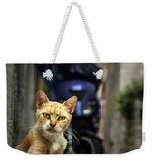 Red Cat With Green Eyes Weekender Tote Bag