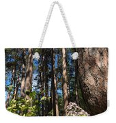 Red Pine Itasca Weekender Tote Bag