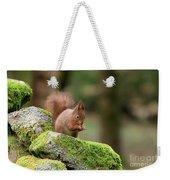 Red Squirrel Sciurus Vulgaris Eating A Seed On A Stone Wall Weekender Tote Bag