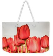 Red Tulip Field In Portrait Format. Weekender Tote Bag
