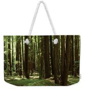 Redwood Trees Armstrong Redwoods St Weekender Tote Bag