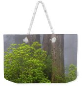 Redwoods By Crescent City 7 Weekender Tote Bag