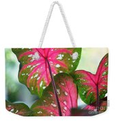 Reflections On The Calming Of Pink Weekender Tote Bag
