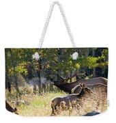 Rocky Mountain Bull Elk Bugeling Weekender Tote Bag by Nathan Bush