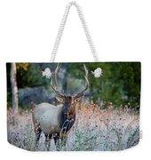 Rocky Mountain Wildlife Bull Elk Sunrise Weekender Tote Bag by Nathan Bush
