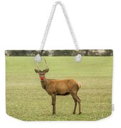 Rudolph The Red Nosed Reindeer Weekender Tote Bag