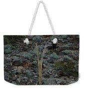 Saguaro Spines Weekender Tote Bag