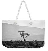 Scottish Highland Tree In Black And White Weekender Tote Bag