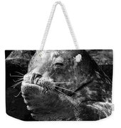 Sea Lion Pup Weekender Tote Bag by Edward Fielding