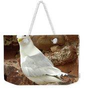 Seagull On Rock Weekender Tote Bag